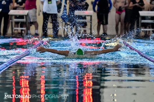 Swim-23